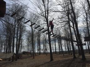 tree treking 2